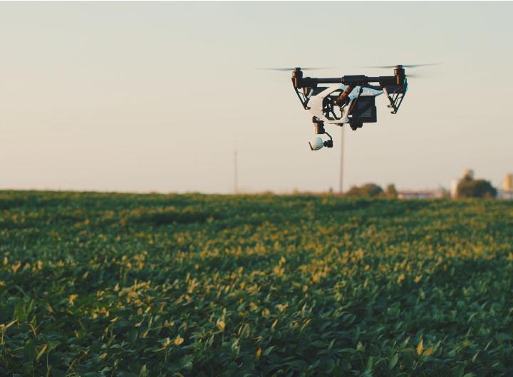 Computer vision smart farming